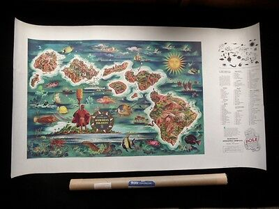>Authentic 1950 DOLE PINEAPPLE HAWAII MAP 41x23 with ORIGINAL DOLE MAILING TUBE!