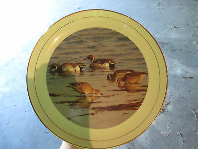 Ducks Unlimited Collectoru0027s Plate 1993 Limited Edition Pintail Ducks & DUCKS UNLIMITED COLLECTOR Plates Classic Waterfowl W S George With ...