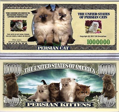 The Persian Cat - Cat Series Million Dollar Novelty Money