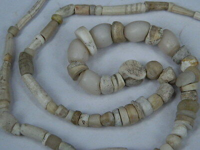 Ancient Shell/Bone Beads Strand Roman 200 BC No Reserve   #BE5090