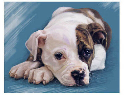 artav American Bulldog Art Print on Watercolor Paper