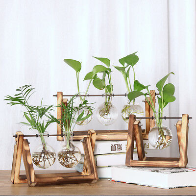 Vintage Style Hanging Glass Tabletop Hydroponic Flower Vase With Wooden Tray