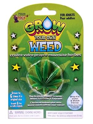 GROW YOUR OWN WEED Totally Legal Just Add Water Grow Expanding Cannabis Leaf