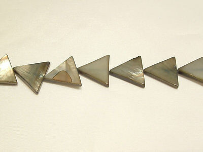 10 x Natural Dyed Shell Beads: BNSP10 Mink Triangle