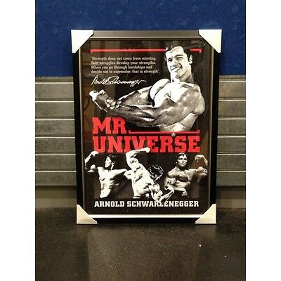 Arnold Schwarzenegger Signed Mr Universe Body Builder Sportsprint Gym Muscle