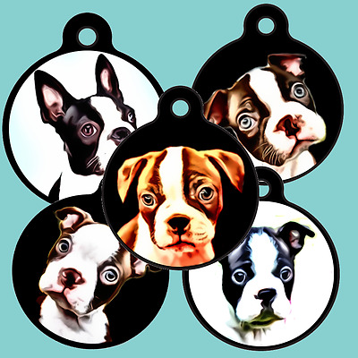 Cute Boston Terrier-Dog-Puppy-Cat-Pet-ID-Tag-Custom-Personalized-ENGRAVED FREE!