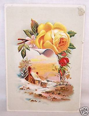 Embossed Lion Coffee Trade Card-Woolson Spice-Rose