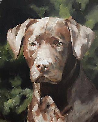 Brown Dog Art PRINT Wall Art from original oil painting by James Coates
