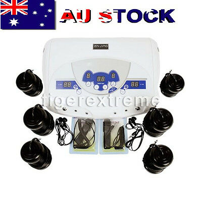 Dual MP3 Ionic Detox Cell Foot Bath Spa Cleanse Machine 6 Arrays AU Stock