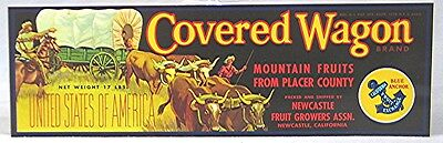 Vintage Fruit Crate label -- Covered Wagon Brand Mountain Fruits