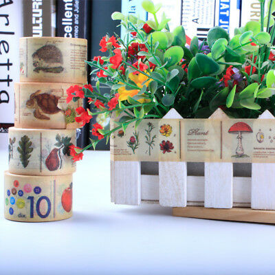 Nature Vintage Retro Washi Tape Masking Adhesive Sticker Scrapbook DIY Craft