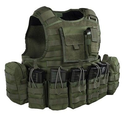 Warrior Assault Raptor Plate Carrier DA 5.56 G36 Plattenträger oliv Gr. M