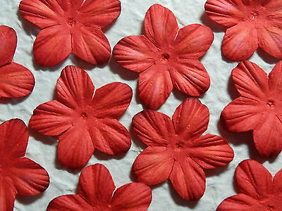 BULK 38mm RED Paper Flower Petals MPFF1D: Christmas Table Scatters Cards Party