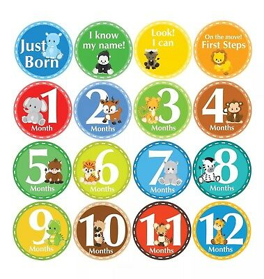 """Belly Doodles ANIMALS Safari Zoo First Year 16 Round Stickers Baby Boy 3.94"""" NEW"""