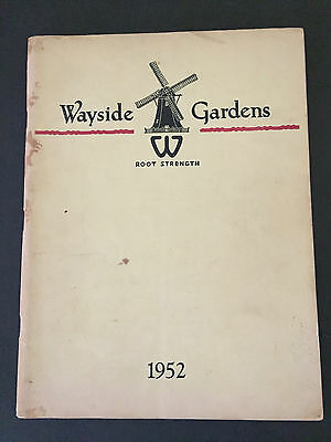 Wayside Gardens Root Strength Plant Flower Catalog 1952 Roses Perennials Shrubs