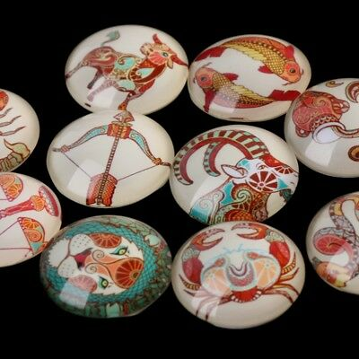 12/20mm Handmade Photo Image Animals Round Cabochon Glass Dome Cover Flat Back