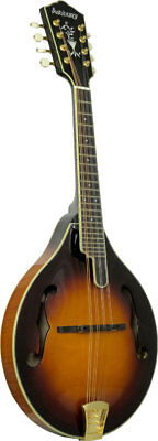 Ashbury AM-510 A-Style BLUEGRASS MANDOLIN, Carved spruce top, curly maple body.