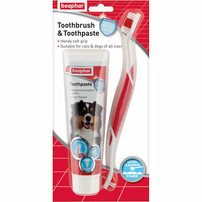 Beaphar Toothbrush & Toothpaste For Dogs & Cats  Liver Flavour
