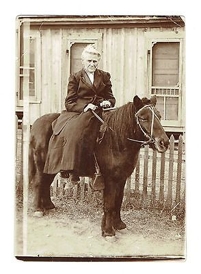 Old Original Photo, Elderly Woman Sitting on a Pony, 3 1/2 X 5 in., Clear Image