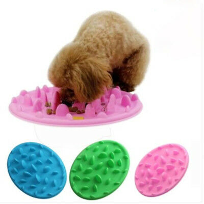 Pet Puppy Dog Cat Slow Feeder Bowl Anti-Choke/Gulp/Bloat Digestion Dish Fashion