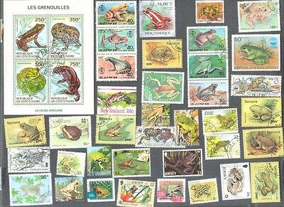 Frogs & Toads collection 40 all different - Amphibians
