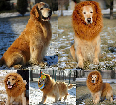 1 Pet Costume Lion Mane Wig For Dog Dogs Hair Halloween Fancy Dress Up Party ^^^