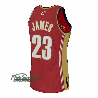 Cleveland Cavaliers LeBron James 2003-04 Hardwood Classics Road Jersey by Mit...