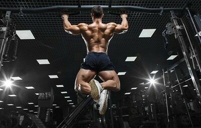 gym fitness training bodybuilding workout muscles abs exercise Motivation Canvas