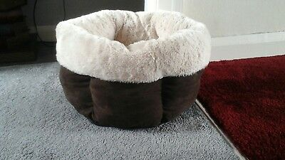large cat bed