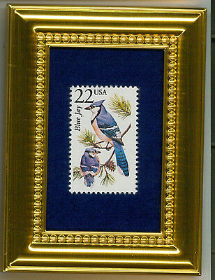 Blue Jay - A Collectible Glass Framed Postage Masterpiece!