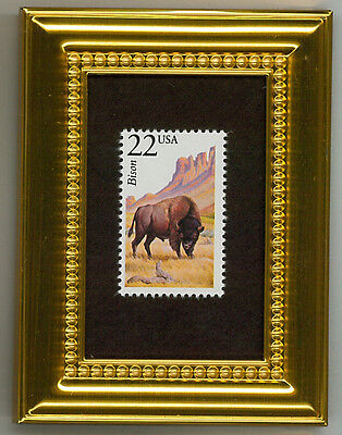 Bison  Buffalo Gift- A Collectible Glass Framed Postage Masterpiece!