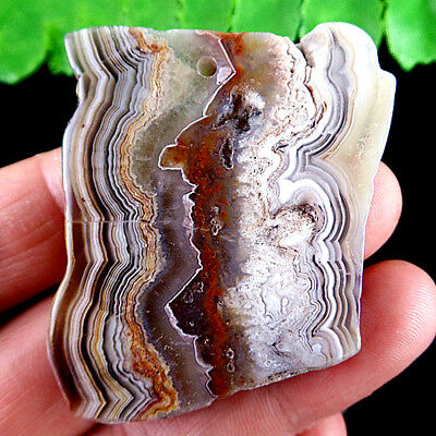 E6.15288 Freefrom Natural Crazy Lace Agate Pendant Bead 50*40*6mm