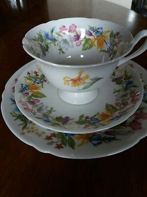 Shelley Spring Bouquet, Cup, Saucer & Plate set