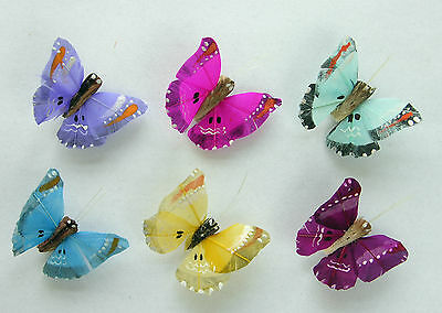 12 Wavy Tail Feather butterflies, 6 Assorted Colours Floral Decorations Weddings