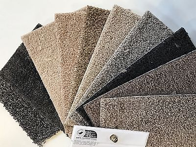 Carpet Roll - STOCK SPECIALS Solution Dyed Polyester Twist *QUICK SALE*