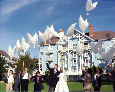 39 Inch helium white dove balloons perfect for weddings & Party Supply/M