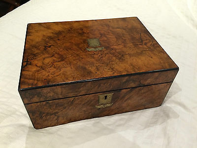 Antique Writing slope oak brass bound late Circa 1830 George IV - Burr Walnut