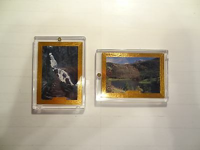 1995 Coors Rock Mountain Heritage Etched Foil Chase Cards!! #'s 1+6!! LOOK!!!