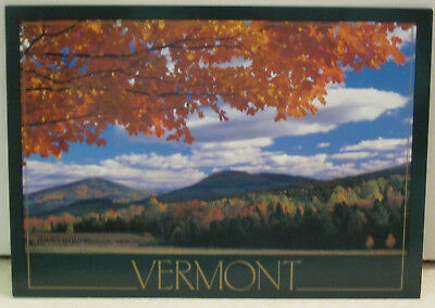 Autumn Foliage The Point Where Sky Meets Earth Vermont Postcard