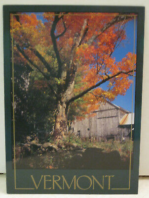 Autumn Foliage Old Weathered Texture Barn Vermont Postcard