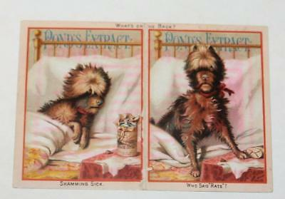Antique 1800's Victorian Trade Card Advertising Pond's Extract Dog in Bed Maine