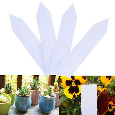 100pcs Garden Plant Pot Markers Plastic Stake Tags Nursery Seed Label Tags Hot #
