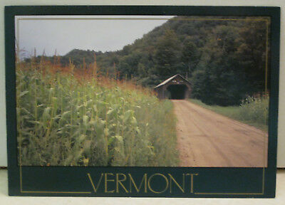 Summer Tunbridge Corn Fields Farm Vermont Postcard