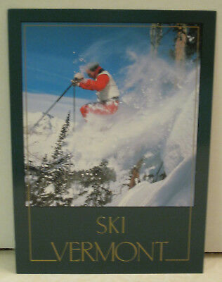 Snow Skier Wind Trees Off Slope in Snow Vermont Postcard
