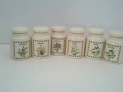 herbs and spices storage container 6 piece set rosemary parsley basil sage dill