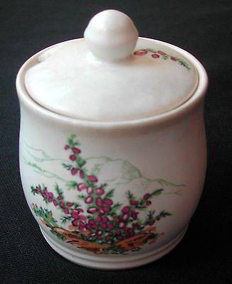 "Sylvac ware ivory HONEY POT for Vivian's Honey 4"" tall including the knob."