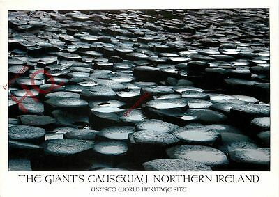Picture Postcard: The Giant's Causeway, Northern Ireland