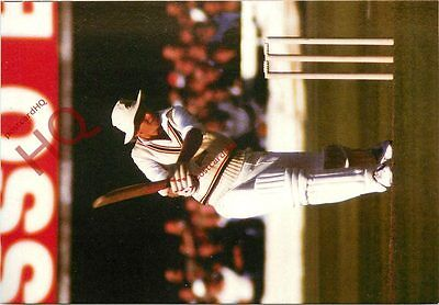Picture Postcard::Cricket, David Gower