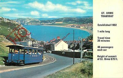 Picture Postcard::GREAT ORME TRAMWAY