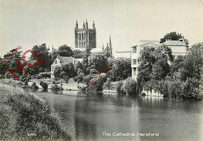 Picture Postcard-:Hereford, The Cathedral